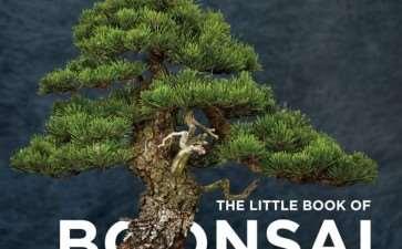 老外新书《盆景小书》发售 图片