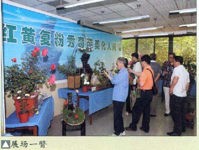 第三届北京月季盆景展