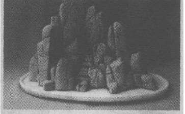 龟纹石单体盆景怎么创作的方法 图片